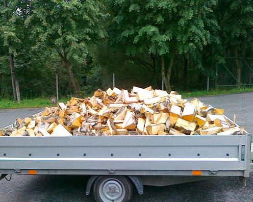 Palivové dřevo střední čechy
